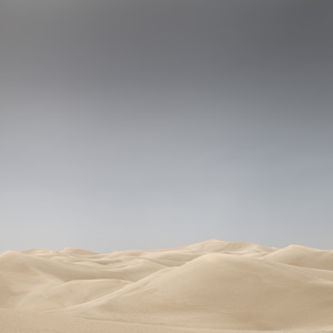 Desert in Transition (Untouched - United Arab Emirates)2017© 2017 Anthony Lamb - Image 24375_0058