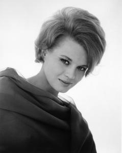 Angie Dickinsoncirca 1960s** I.V. - Image 24383_0080