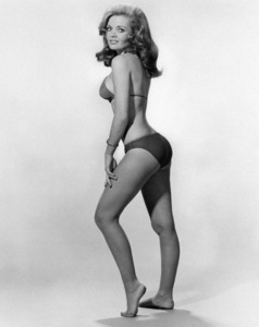 """Deanna Lund in """"Land of the Giants""""circa 1970** I.V. - Image 24383_0614"""