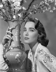 Julia Adamscirca 1950s** B.D.M. - Image 24384_0017