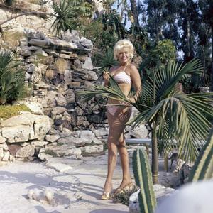 Jayne Mansfield at homecirca 1960s** J.C.C. - Image 24385_0043