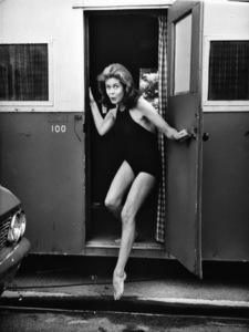 Elizabeth Montgomerycirca 1960s** I.V. - Image 2709_0057