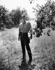 "Burt Reynolds in ""Gunsmoke""circa 1962Photo by Gabi Rona - Image 2868_0209"