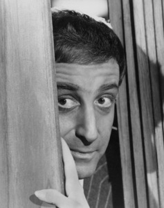 "Peter Sellers in ""The Bobo""Warner Brothers 1967 - Image 2930_0031"