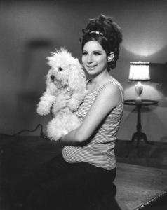 "Barbra Streisand with her poodle""Sadie"" 1968**I.V. - Image 2995_0321"