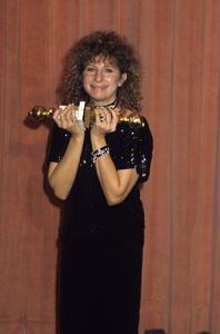 "Barbra Streisand at ""The 41st Annual Golden Globe Awards""1984 © 1984 Gary Lewis - Image 2995_0360"