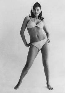Raquel Welch1965 - Image 3084_0136