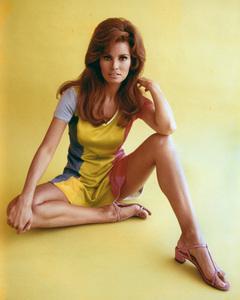 Raquel Welchcirca 1965**I.V. - Image 3084_0179