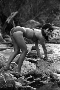 Raquel Welch1965 © 1978 Gunther - Image 3084_0192