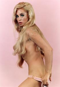 Edy Williamscirca 1967**I.V. - Image 3105_0005