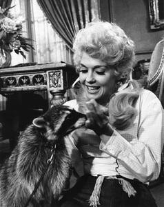"""""""The Beverly Hillbillies""""Donna Douglascirca 1966**I.V. - Image 3265_0124"""