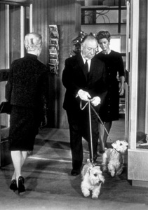 """""""The Birds,""""Tippi Hedren, Alfred Hitchcock (Cameo Appearance)1963 Universal - Image 3302_0016"""