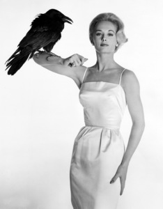 """""""The Birds""""Tippi Hedren1963 Universal**I.V. - Image 3302_0041"""