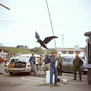 """""""The Birds"""" movie set at Bodega Bay in California1961 © 1978 John Bressie - Image 3302_0052"""