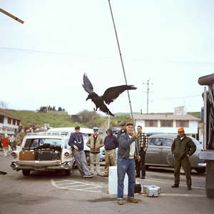 """The Birds"" movie set at Bodega Bay in California1961 © 1978 John Bressie - Image 3302_0052"