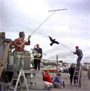 """Director Alfred Hitchcock and bird trainer Ray Berwick on """"The Birds"""" movie set at Bodega Bay in California1961 © 1978 John Bressie - Image 3302_0066"""