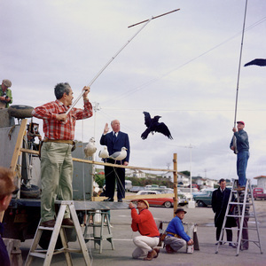"""Director Alfred Hitchcock and bird trainer Ray Berwick on """"The Birds"""" movie set at Bodega Bay in California1961 © 1978 John Bressie - Image 3302_0067"""