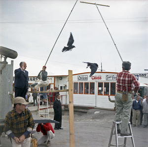 """Director Alfred Hitchcock and bird trainer Ray Berwick on """"The Birds"""" movie set at Bodega Bay in California1961 © 1978 John Bressie - Image 3302_0068"""