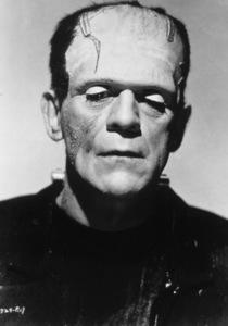 Bride Of Frankenstein, TheBoris Karloff (1935) Paramount - Image 3318_16
