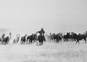 """The Cowboys""John Wayne1972 Warner Brothers - Image 3370_0003"