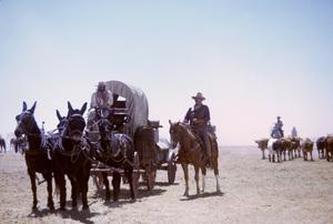 """The Cowboys""Roscoe Lee Browne, John Wayne1971© 1978 David Sutton - Image 3370_0172"