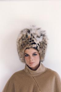 Katharine Ross1967© 1978 Bob Willoughby - Image 3461_0745
