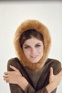 Katharine Ross1967© 1978 Bob Willoughby - Image 3461_0751