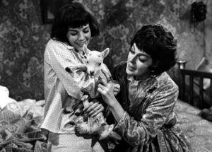 """Gypsy"" Natalie Wood and Rosalind Russell1962 Warner Bros. © 1978 Mel Traxel - Image 3471_0120"