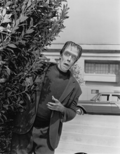 """""""The Munsters""""Fred Gwynnecirca 1964** Part of the Kevin Burns Collection - Image 3600_0201"""