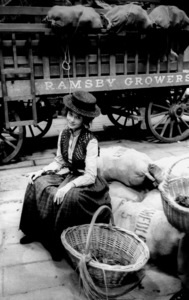 """My Fair Lady""Audrey HepburnWarner Bros.  1964 © 1978 Bob Willoughby - Image 3604_0718"