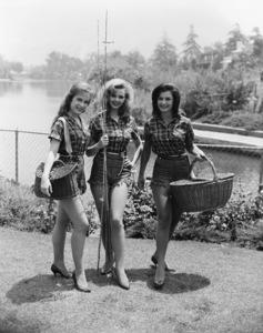 """Petticoat Junction""Linda Henning, Jeannine Riley, Pat Woodellcirca 1963Photo by Gabi Rona - Image 3650_0018"