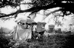"""Raintree County""1956 MGM © 1978 Bob Willoughby - Image 3678_0086"