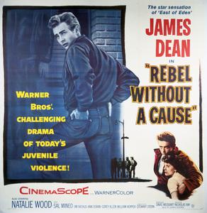 """Rebel Without a Cause"" (Poster)1955 Warner Brothers** I.V. - Image 3684_0011"