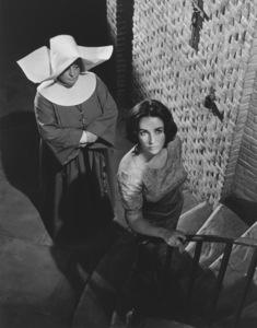 """Suddenly Last Summer""Elizabeth Taylor1959 Columbia**R.C.MPTV - Image 3756_0004"