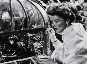 """""""Suddenly Last Summer""""Katharine Hepburn 1959 Columbia**R.C. - Image 3756_0006"""