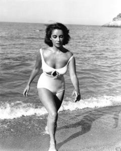 """Suddenly Last Summer""Elizabeth Taylor1959 Columbia / **I.V.  - Image 3756_0032"