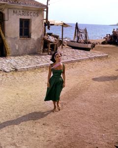 """Suddenly Last Summer""Elizabeth Taylor1959 Columbia**I.V. - Image 3756_0039"