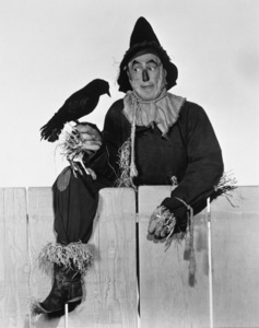 """The Wizard of Oz""Ray Bolger1939 MGM - Image 3823_0008"
