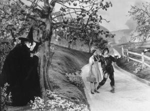 Margaret Hamilton, Judy Garland, Ray BolgerFilm SetWizard Of Oz, The (1939)0032138MGM - Image 3823_0018