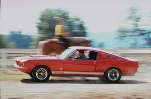 Car Category 1967 Shelby GT 500 Sept. 1966 © 1978 Sid Avery MPTV - Image 3846_0343