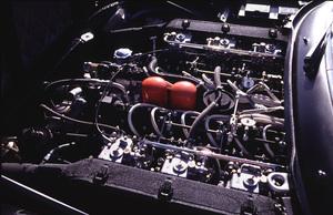 Cars2000 Concorso Italiano Monterey, CA1972 Ferrari 365 GTC-4 © 2000 Ron AveryMPTV - Image 3846_0540