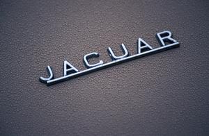 Car Category1964 Jaguar E-Type 3.82004 © 2004 Ron Avery - Image 3846_1202