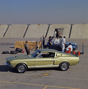 Cars 1967 Shelby GT350 at Shelby