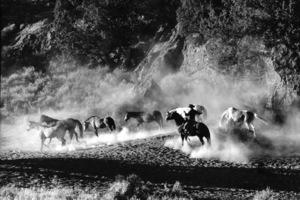 WesternsHorse Ranch in Bend, OregonSeptember 2000 © 2000 Gene Trindl - Image 3888_0010