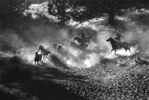 WesternsHorse Ranch in Bend, OregonSeptember 2000 © 2000 Gene Trindl - Image 3888_0011