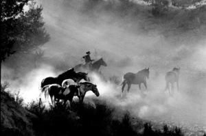 WesternsHorse Ranch in Bend, OregonSeptember 2000 © 2000 Gene Trindl - Image 3888_0015