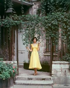 Fashion modelcirca 1955 © 2008 Mark Shaw - Image 3956_0986