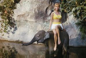 Model at Disneyland 1962 © 2010 Mark Shaw - Image 3956_1034