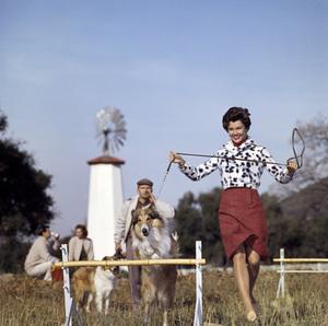 Modelcirca 1950s© 1978 Paul Hesse - Image 4236_0006