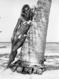"""Yvette Mimieux relaxing in the shade of a palm tree during the filming of """"Dark of the Sun""""1967 - Image 4662_0048"""